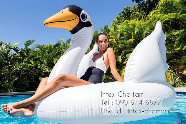 Intex แพร์ยางลายหงษ์ สีขาวตัวใหญ่