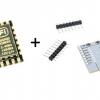 ESP8266 ESP-12 & Module Adapter