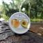 Avocado & Apricot Natural Scrub อะโวคาโด สครับ แอพพริคอต thumbnail 4