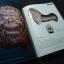 โบราณวัตถุในพิพิธภัณฑสถานแห่งชาติ พระปฐมเจดีย์ โดย กรมศิลปากร หนา 250 หน้า ปี 2548 thumbnail 7