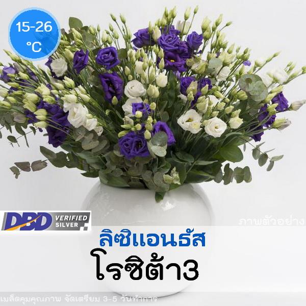 ไม้ตัดดอก ลิซิแอนธัส โรซิต้า 3(Rosita 3 Series) 2.59-2.80 บาท/เมล็ด
