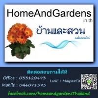 ร้านบ้านและสวน-เมล็ดออนไลน์