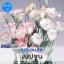ไม้ตัดดอก ลิซิแอนธัส เนปจูน (Neptune Series) 1.44 - 1.95 บาท/เมล็ด